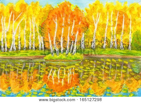 Hand painted picture, watercolor - autumn landscape, yellow birch forest with reflection in water and little island with birches. Painted from real landscape in park Sokolniki in Moscow.