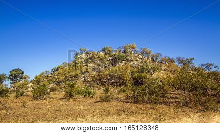 Boulder african landscape in Kruger national park, South Africa