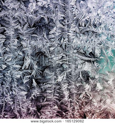 intricate beautiful frosty pattern on winter glass