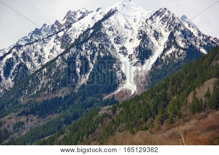 powerful, high mountains, partially covered with snow with lots of peaks, peaks present vegetation, conifers, Christmas trees at low altitude in the foreground deciduous trees, without leaves