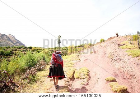 Peruvian lady walking up hill with grains strapped to her back