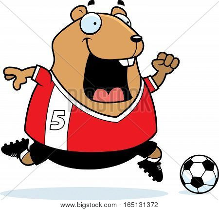 Cartoon Hamster Soccer