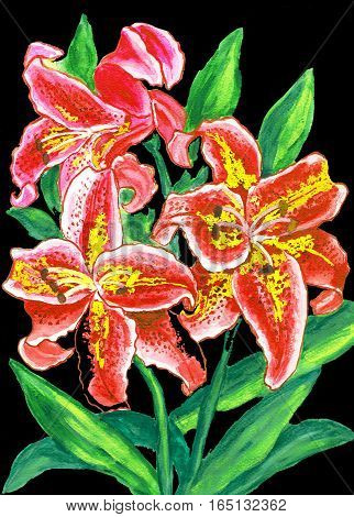 Red lilies on black, hand painted picture watercolor