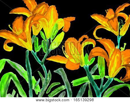 Painting, watercolour - orange-yellow lilies on black background.