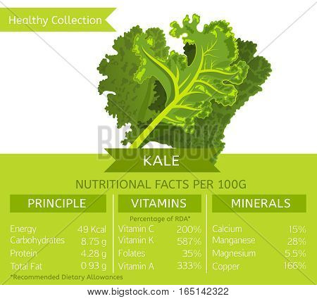 Kale health benefits. Vector illustration with useful nutritional facts. Essential vitamins and minerals in healthy food. Medical, healthcare and dietory concept.