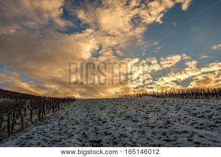 Der Sonnenuntergang über dem gepflügten Feld vom abgedeckten Schnee.