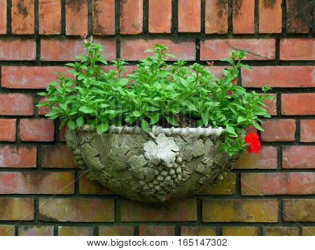 Vintage style planter with bright green leaves on terracotta bricks wall, Background