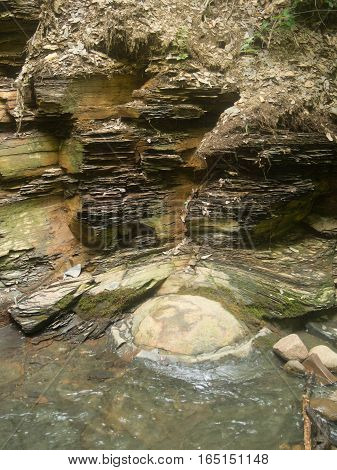 Squashed Concretion Center Stone by Shale Hillside in a Delaware County Ohio Park