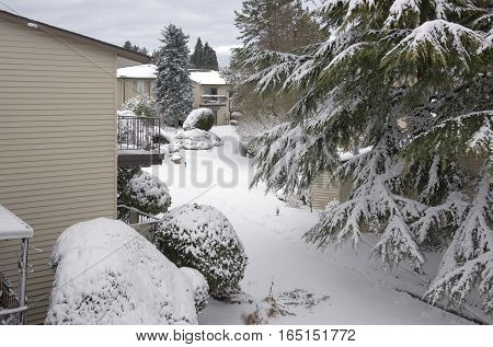 Snow storm and whiteout in a neighborhood Gresham Oregon.