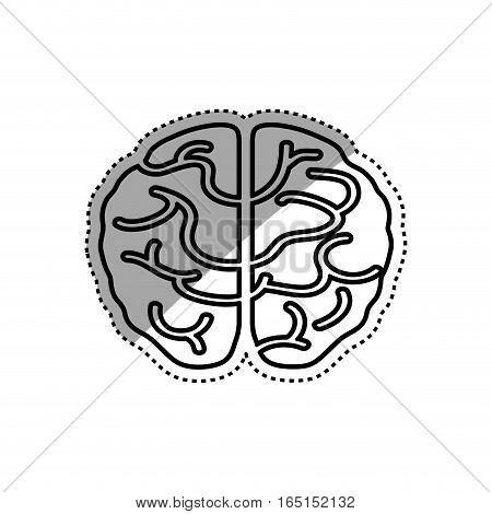 Isolated human brain icon vector illustration graphic design