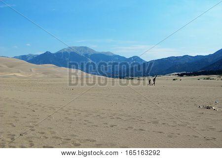 Wandering lonely through the arid dry desert