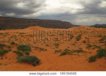 stormy skies over the arid desert in Arizona