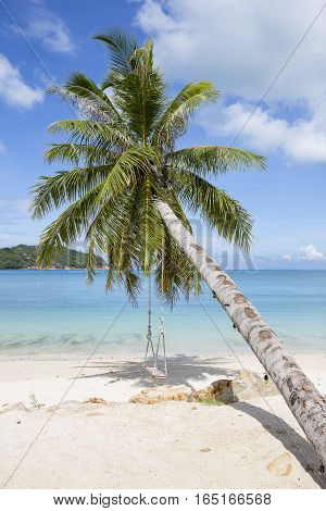Beautiful tropical beach coconut palm tree and blue sea water in island Koh Phangan Thailand