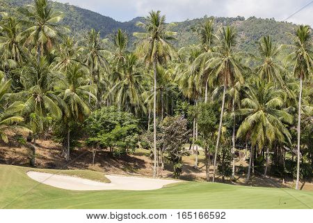 Landscape of a beautiful green golf course and coconut palm tree with sky. Island Koh Samui Thailand.