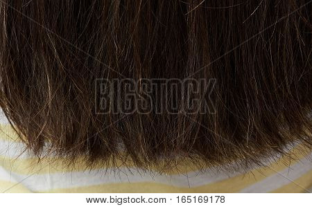 Bad ends of woman hair closeup. Dark hair end girl
