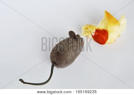 mouse toy and sausage bread on white background
