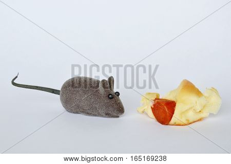 mouse doll and sausage bread on white background
