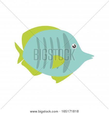 exotic fish sealife freshwater vector illustration eps 10