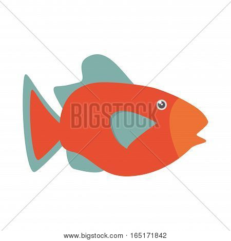 orange fish marine ecosystem life vector illustration eps 10