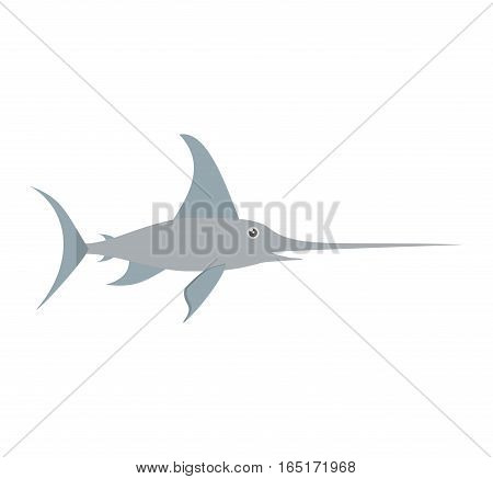 marlin swordfish marine wildlife vector illustration eps 10