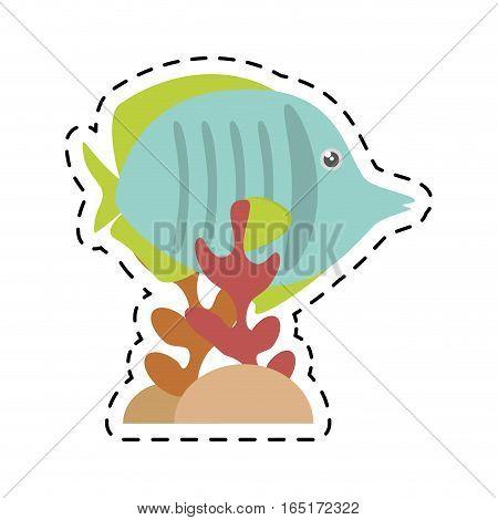exotic fish sealife freshwater coral vector illustration eps 10