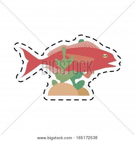 cod fish sealife food ocean coral vector illustration eps 10