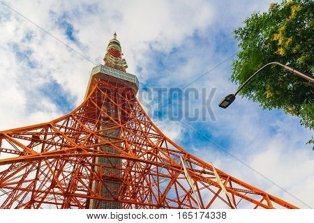 Tokyo Tower Wth Green Tree Blue Sky