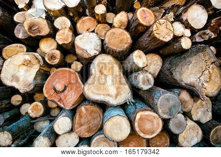 Stacked cut logs of wood in a winter woodpile of irregular sizes for domestic heating and energy full frame background view