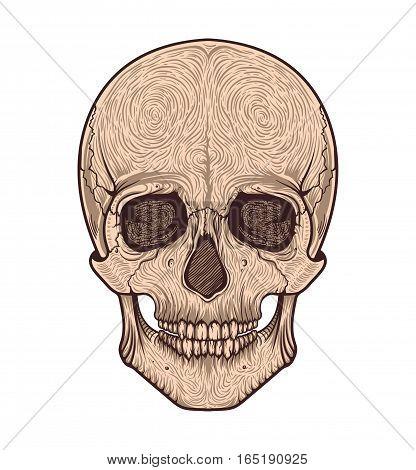 Human skull tribal style.Tattoo blackwork. Vector hand drawn illustration. Boho design