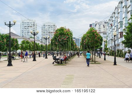 NOVOROSSIYSK RUSSIA - MAY 08.2016: Chestnut Avenue on the Boulevard Chernyakhovsky