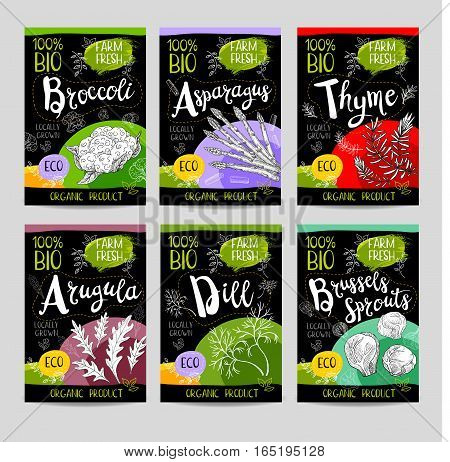 Set of colorful labels, sketch style, food, spices, black background. Asparagus, brussels sprouts, broccoli, thyme, arugula, dill. Vegetables, farm fresh, locally grown, organic product.