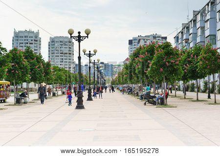 NOVOROSSIYSK RUSSIA - MAY 08.2016: Chestnut Avenue on the Boulevard Chernyakhovsky the city of Novorossiysk