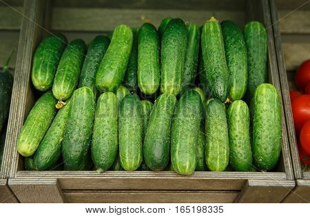 Cucumber Box On Sale In Food Shop