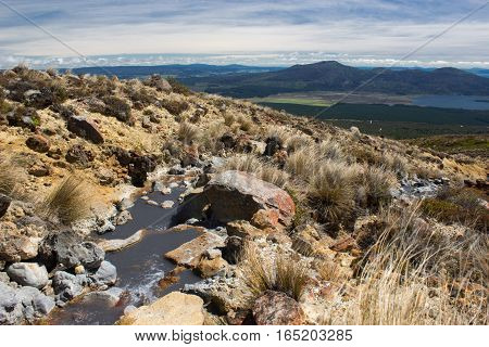 Creek In Tongariro Alpine Crossing