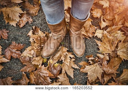 Woman's legs in boots on autumn leaves.