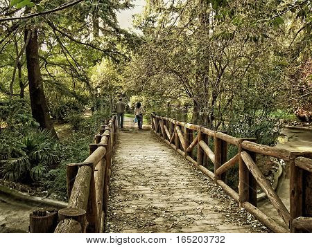 Wooden bridge in old park