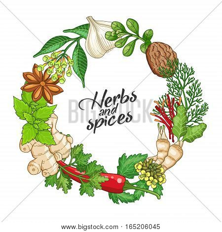Vector hot circle wreath template with spices and herbs. Decorative colorful composition with type design