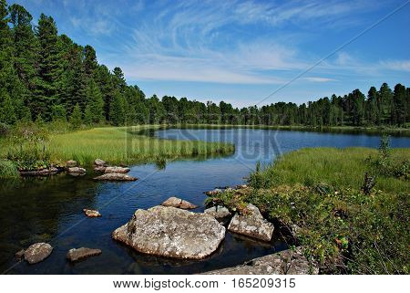 Wild forest river and Karacol lake Altai Russia