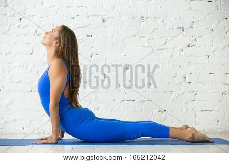 Young happy attractive woman practicing yoga, stretching in Cobra exercise, Bhujangasana pose, working out, wearing sportswear, blue suit, indoor full length, white loft studio background