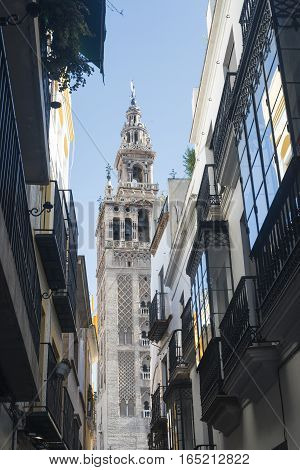 Sevilla (Andalucia Spain): the Giralda belfry of the cathedral and old street