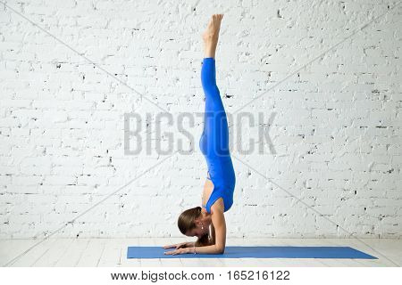 Young attractive woman practicing yoga, standing in Pincha Mayurasana exercise, handstand pose, working out, wearing sportswear, blue suit, indoor full length, white loft studio background