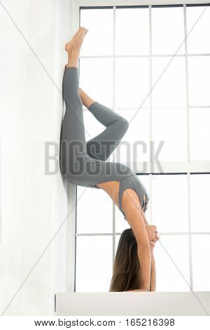 Young attractive woman practicing yoga, standing in Downward facing Tree Pose exercise, Adho Mukha Vrksasana pose, working out, wearing sportswear, grey suit, full length, window studio background