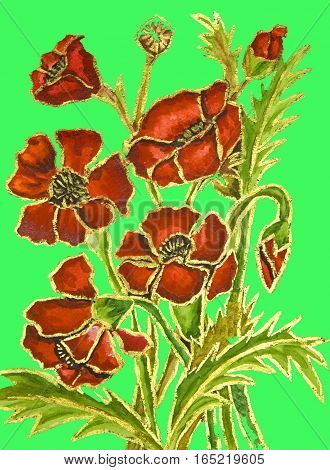Poppies ongreen background hand painted illustration watercolour and gouache.