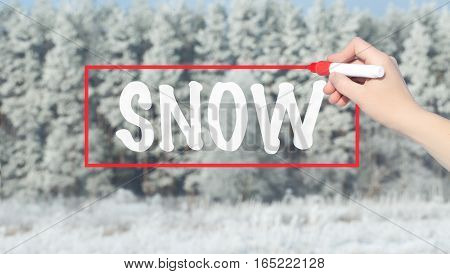 Woman Hand Writing Snow With Marker Over Snowy Forest.