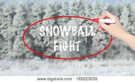 Woman Hand Writing Snowball Fight With Marker Over Winter Forest.