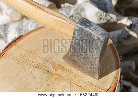 Closeup of axe in a birch log a pile a logs in the background