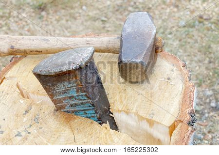 Sledgehammer and a wedge splitting a birch log