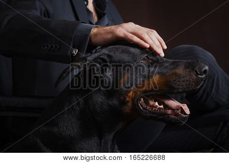 The man in a business suit. Holds a hand on a Dobermann terrier. Gav gav