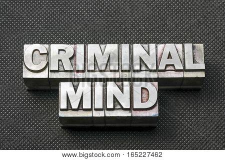 Criminal Mind Bm