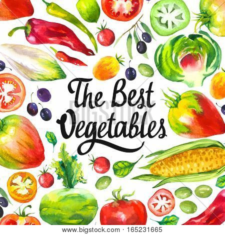 Watercolor illustration with round composition of farm products. Vegetables set: artichokes, tomato, olives, cauliflower, chicory, corn, tomato, spinach, peppers. Fresh organic food.